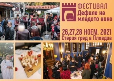 Young Wine Festival